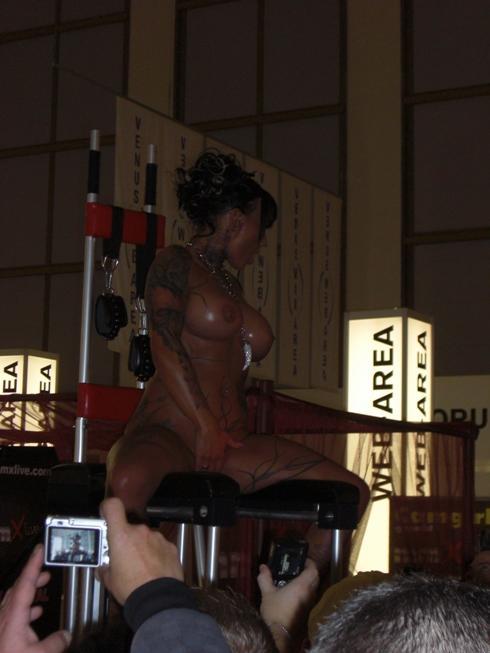 Наш фотоотчет с выставки Venus 2010 Берлин, Германия