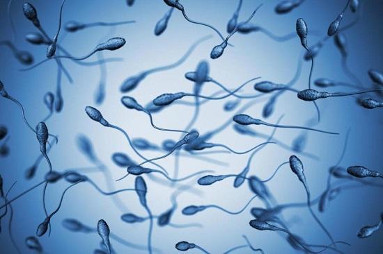 17 фактов о сперме, о которых многие не догадывались