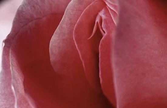 10 интересных фактов о клиторе